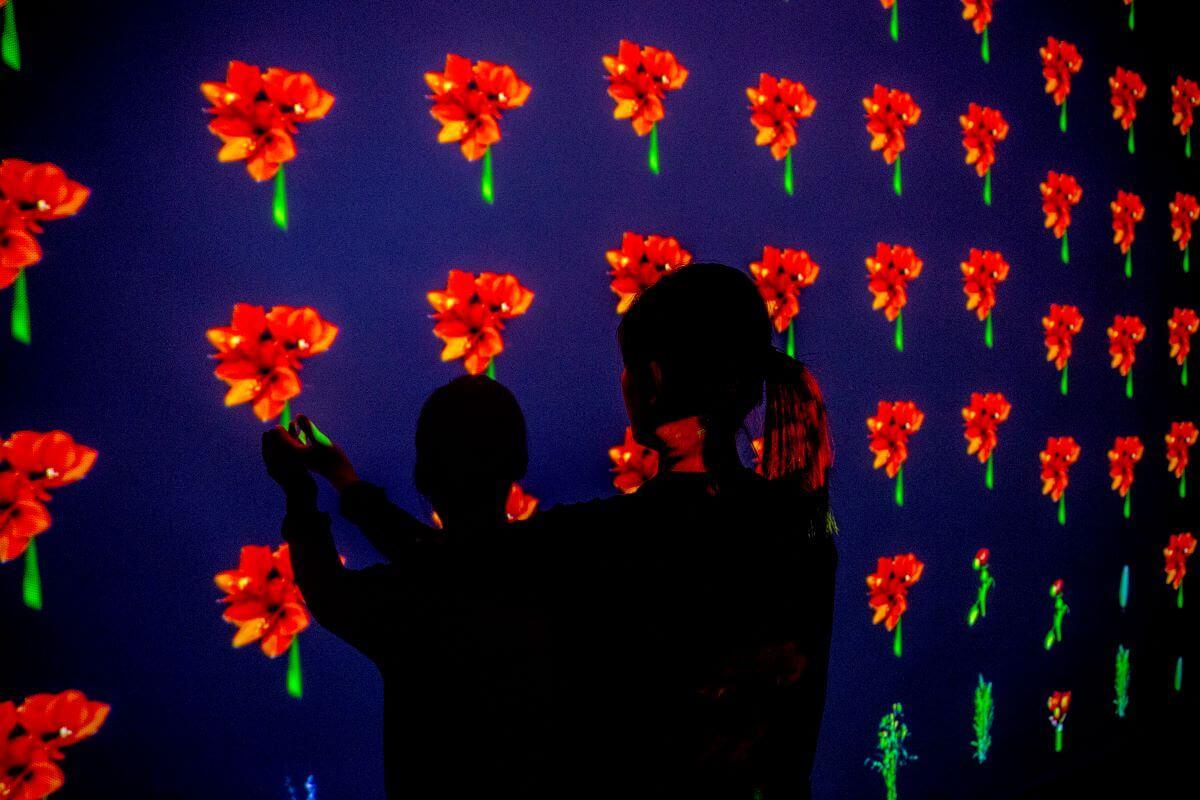 二〇一七年於台北白晝之夜展出的《凋零中的盛放》,屏幕上的花卉會隨着觀眾的手的擺動而開花或枯萎,展現花卉的生命周期。