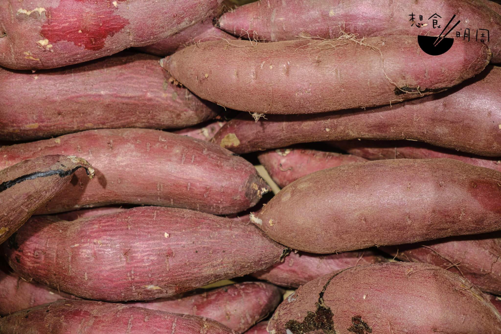 紅霧島甜薯