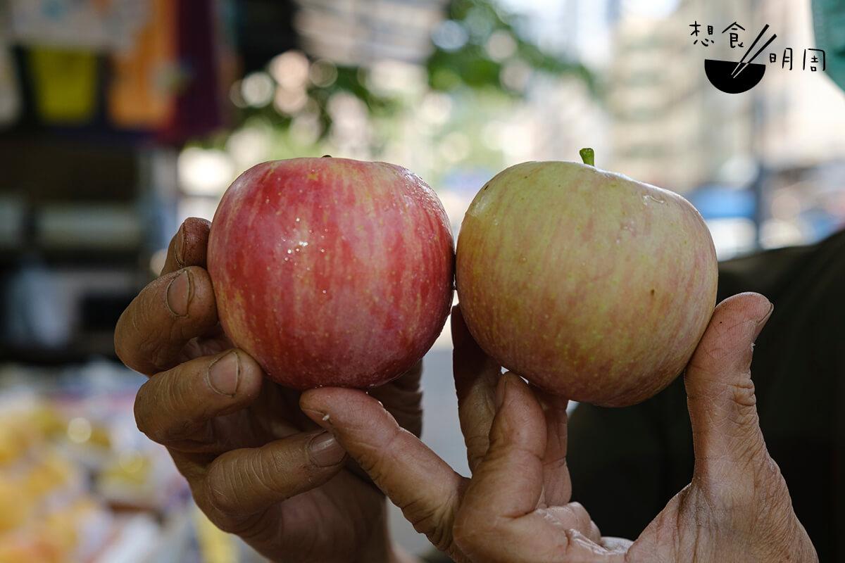 你分得清楚以上蘋果的生長方向嗎?