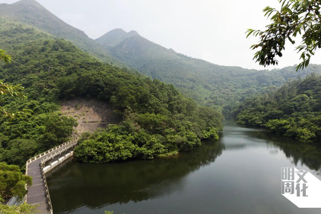 小巧的鶴藪水塘,十分寧靜。