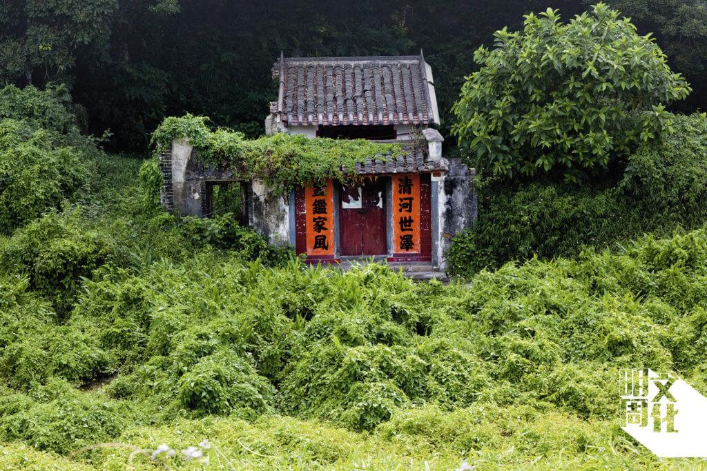 部分村屋仍有人打理,門旁貼上簇新的對聯。