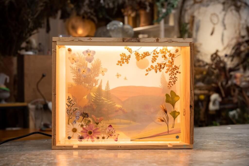 創作人林南雅以回收花卉創作成家居擺件,乾花併畫加入燈光效果後,可作為裝飾擺設、小夜燈、投影畫及相架。
