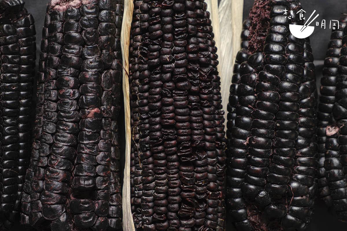 粟米文化,無疑是眾多南美菜系的共同語言。Ricardo現時便用這款紫粟米做出主菜。