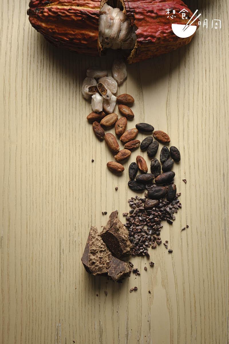 Ricardo最近成功用厄瓜多爾原生可可果,親自發酵、處理,並調成黑朱古力來。