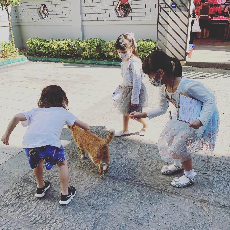 冰冰與幼稚園小朋友到文武廟實地考察,尋訪貓阿武的下落。