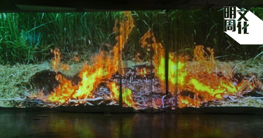作品中記錄農夫燒廢竹的影像,並以漫天煙霧連結出城巿的街道輪廓。