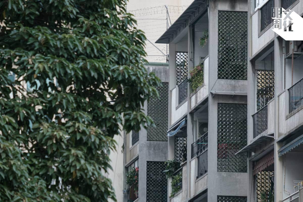 每座樓宇設計都各有特色