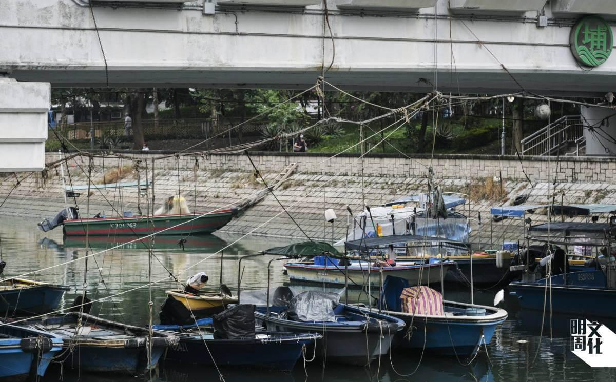 林村河上不少小艇,艇家自行用繩索固定位置,又會自建梯子上落。