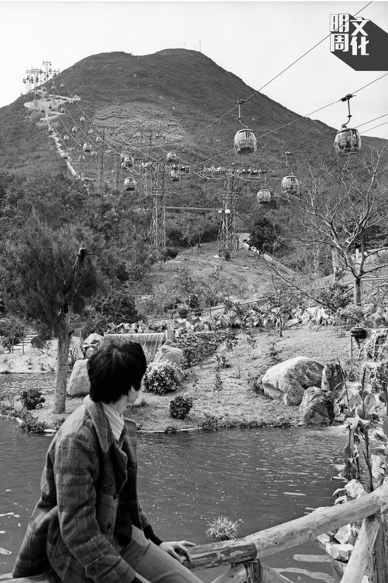 攝於1977年,當年的海洋公園是名副其實的公園,山下花草林 蔭,是市民休憩的好地方,在石屎森林的城市中提供了一處呼吸 的空間。(圖片由政府新聞處提供)