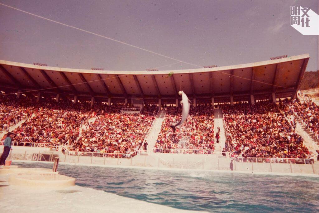香港海洋劇場開幕初期是全球最大的哺乳類海洋生物表演場地。