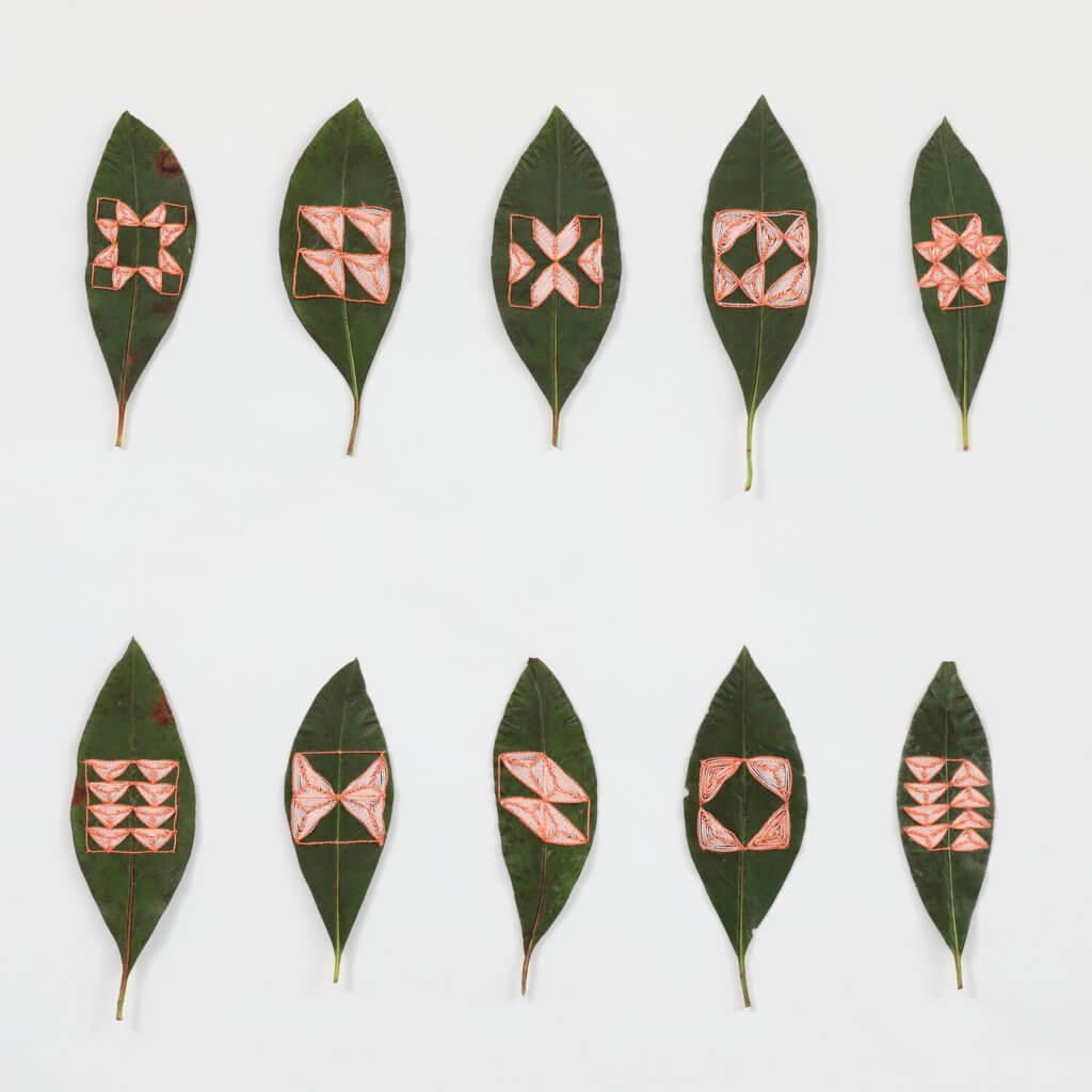 人類幾何符號與自然圖案,應同出一脈。