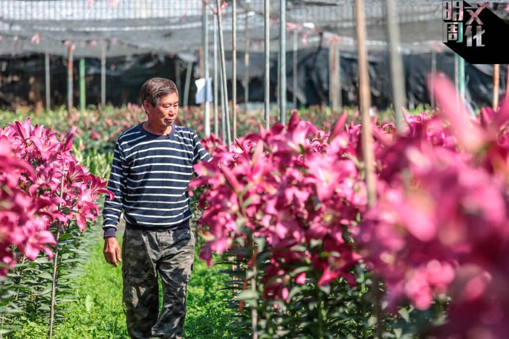 梁日信今年69歲,大半生都在農田裏度過。
