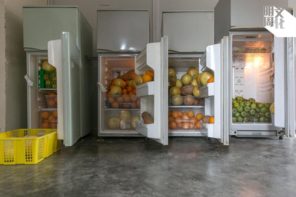 牛媽的屋內,為牛特設八個大雪櫃,放滿橙子、檸檬、青蘋果、南瓜等蔬果。