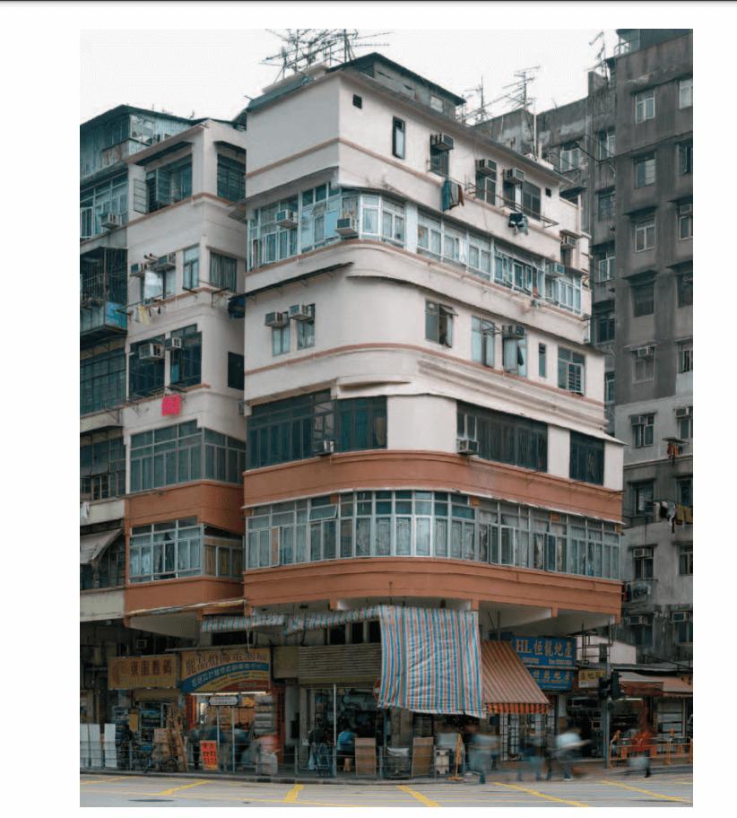 李曾為攝影師Michael Wolf的幾本攝影集寫撰寫緒言及補充圖片說明。圖為拍攝香港轉角大廈的《街頭街尾》內的照片。