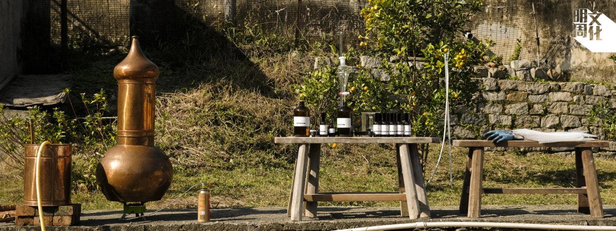 每次收割,為了保持植物鮮度,都會在田邊提煉,也方便取山水來進入冷卻。