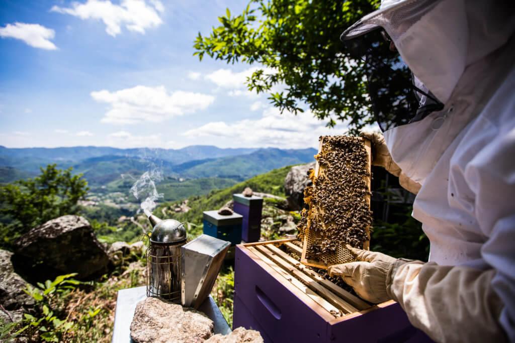 melvita-save-the-bees-2021