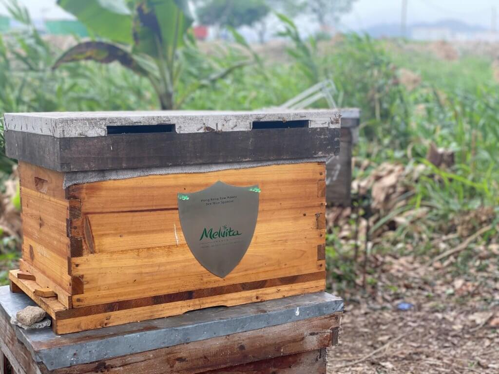 melvita-bee-hive