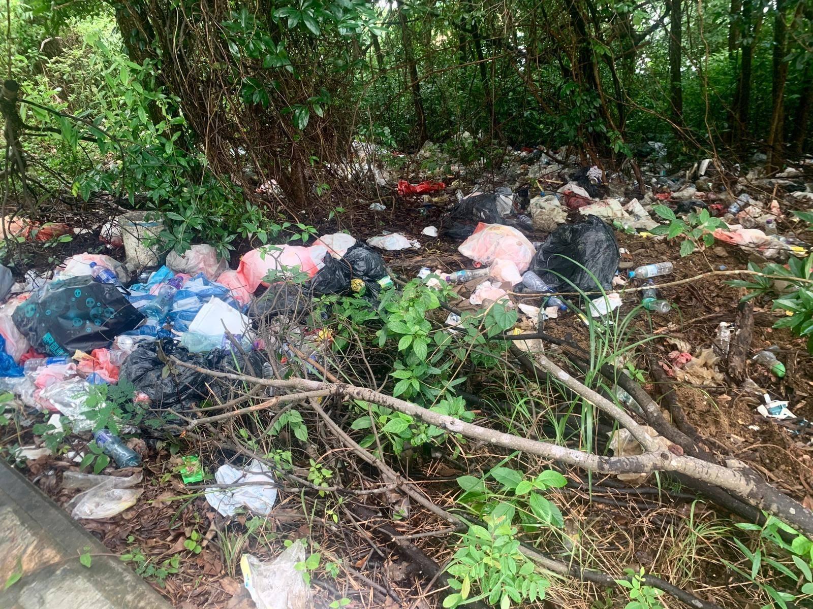 Kitti去年在馬屎洲上的叢林,發現一大片垃圾。