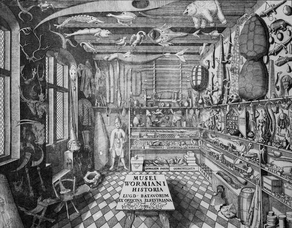 描繪十六世紀收藏家Ole Worm的珍奇櫃圖畫