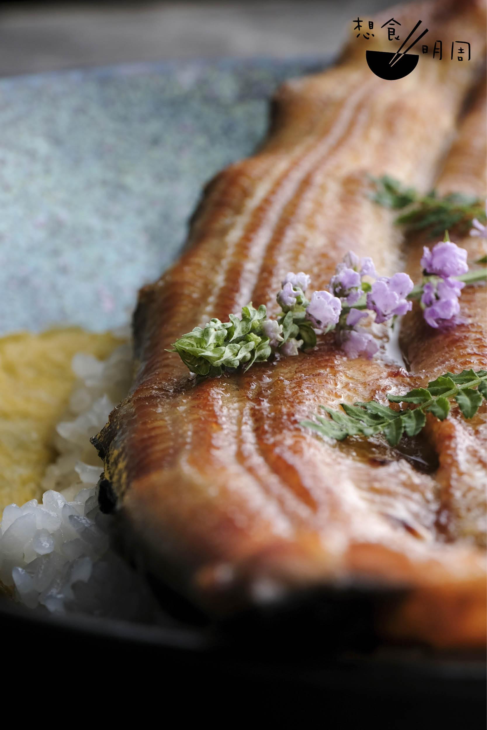 由於劏完即燒,肉質會收縮,邊位呈波浪形。如果用急凍鰻,由於預先劏好,肉質漸變鬆馳,便不復見浪邊。