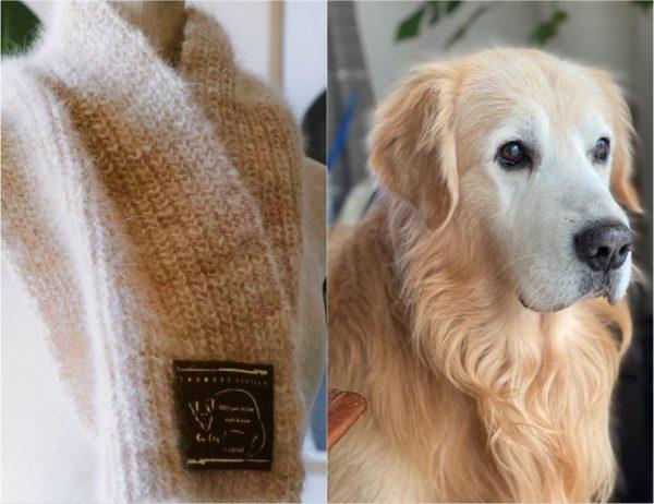 由金毛尋回犬製成的圍巾。圖片來自いぬのけテキスタイル官網