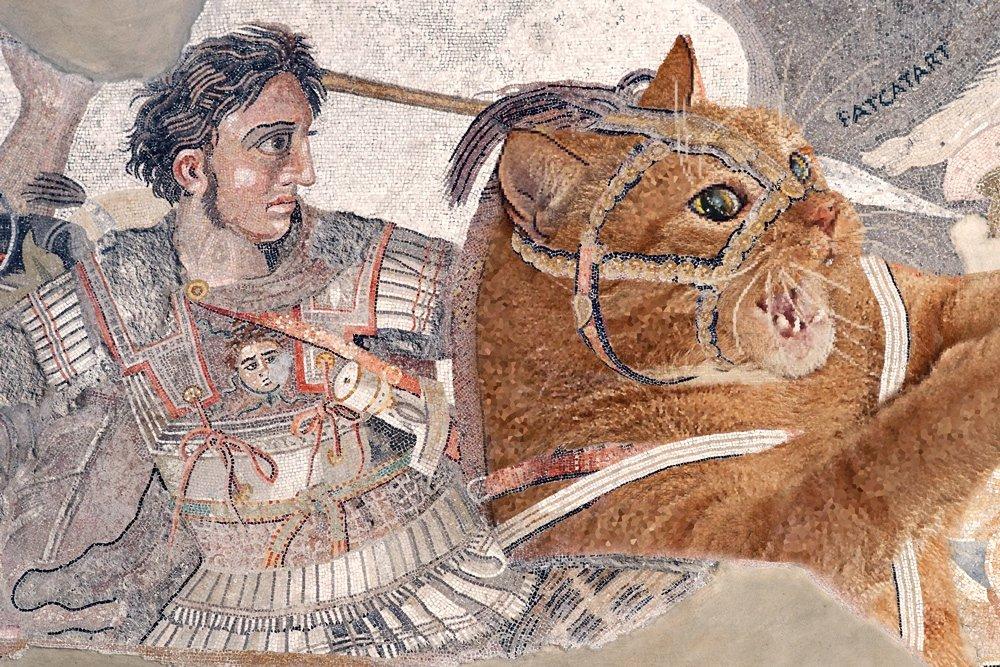 battle_of_issus_cat-w-jpg-nggid03262-ngg0dyn-1000x667x100-00f0w010c010r110f110r010t010