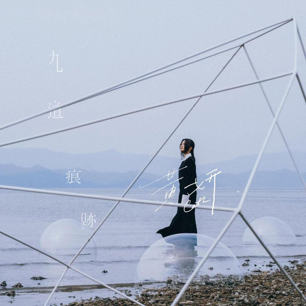 王樂儀近三年與歌手黃妍長期合作,成品收錄在黃妍的《九道痕跡》專輯,其中充滿破碎情感。