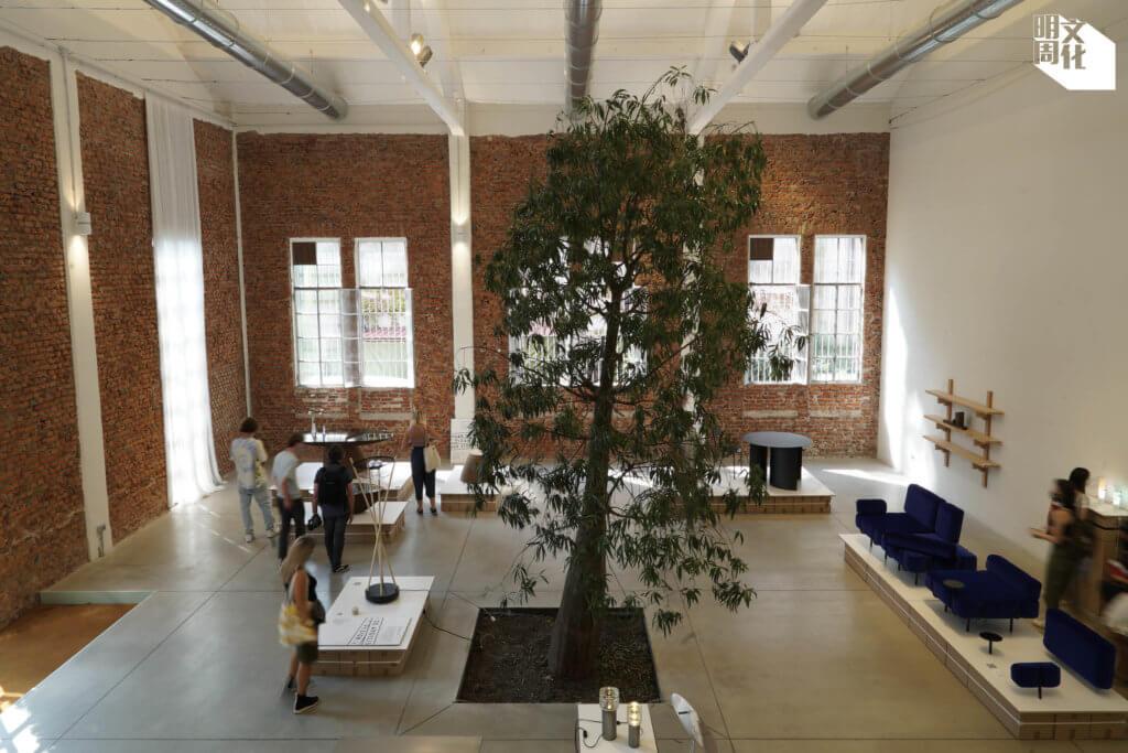 家具設計如何與自然及本土環境共存,成了今年米蘭設計展的主要議題之一。