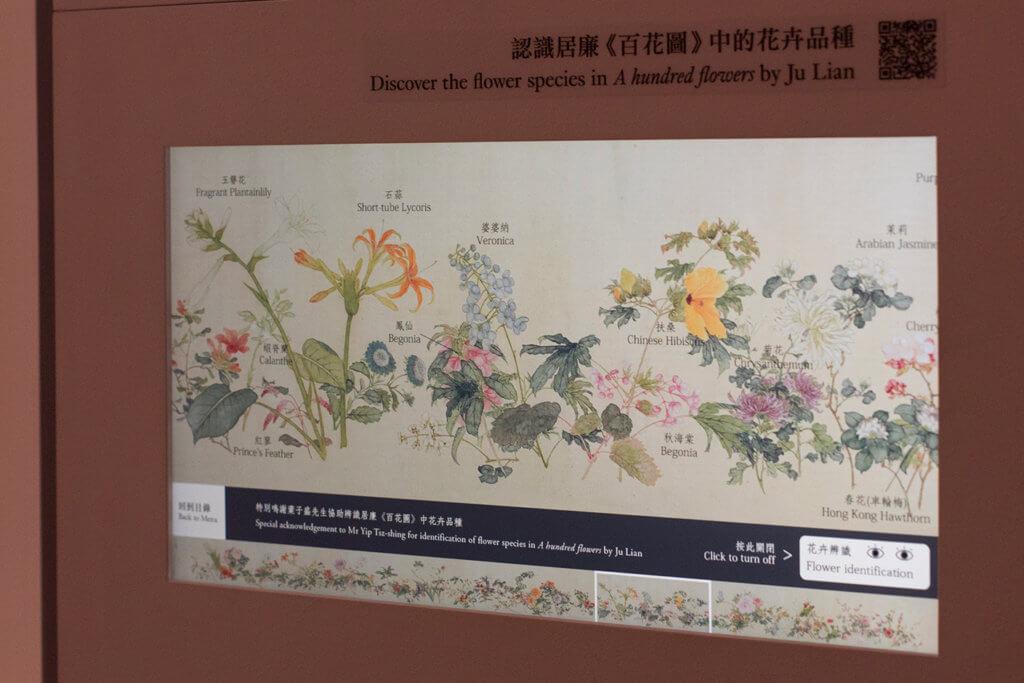 畫作旁設有螢幕展示畫中花卉名稱,另外更選出當中十種香港常見的香花配對真實照片,供觀眾比對。