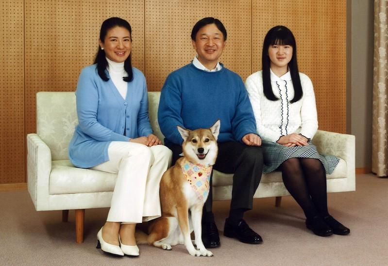 愛子公主與明年繼任為天皇的父親德仁、母親雅子及愛犬合照
