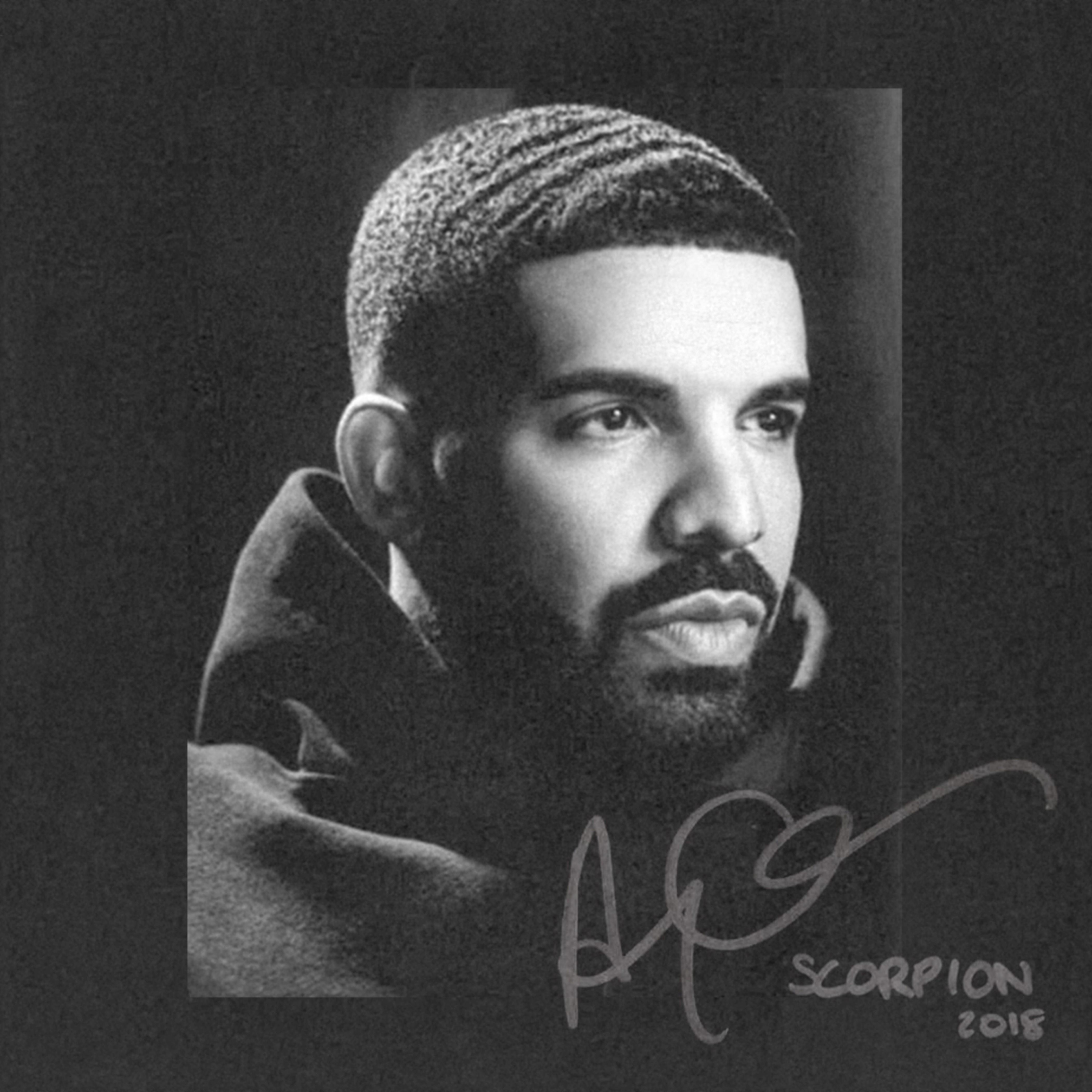 drake-scorpion-art