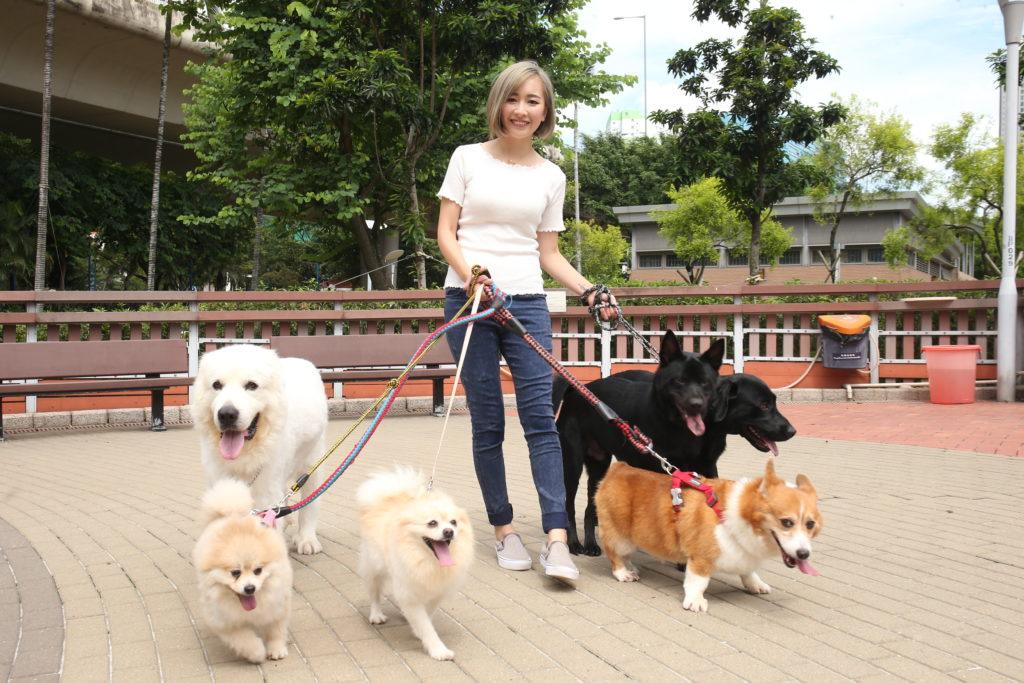 要照顧收養回來的六狗三貓,安采妮花上很多時間和金錢,但覺得很值得。