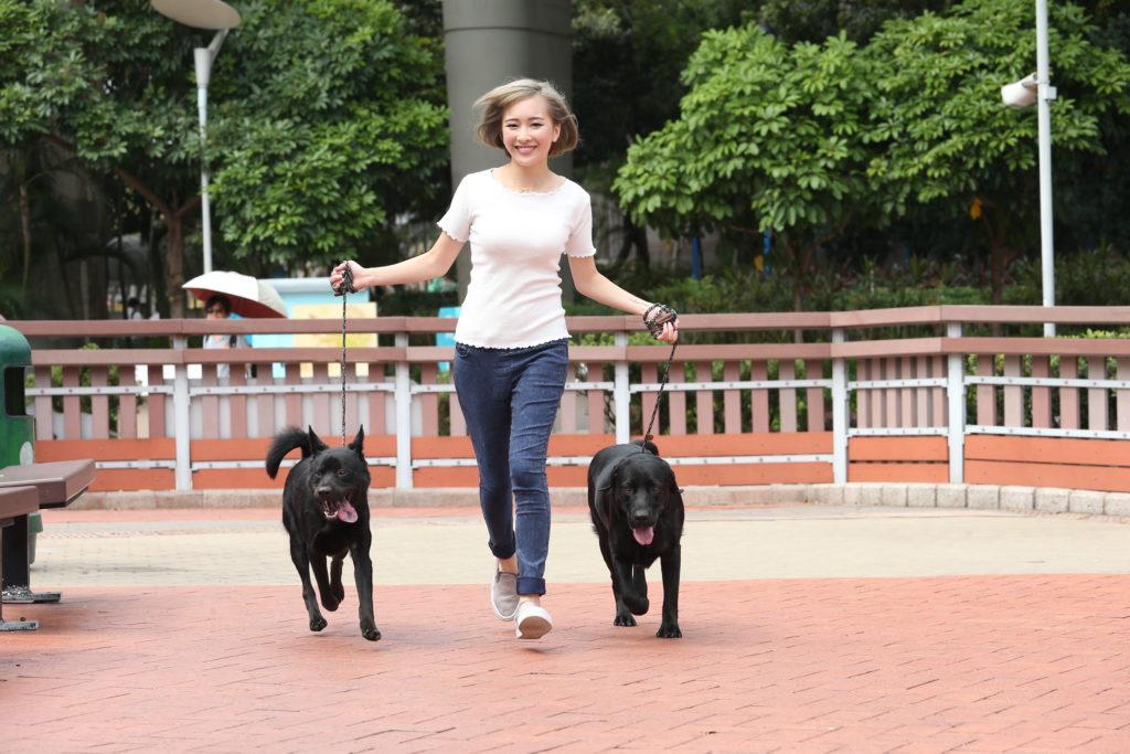 唐狗Mike(左)和拉布拉多阿寶(右)很喜歡跑步,來到公園便拔足狂奔。