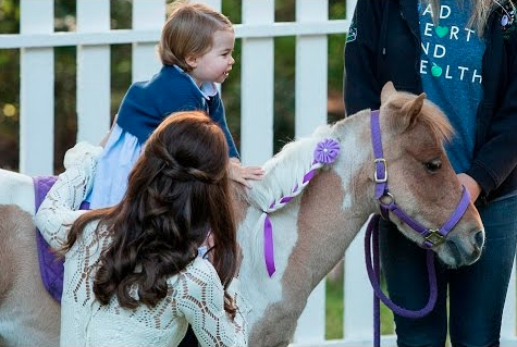 夏洛特一歲半已學習騎馬