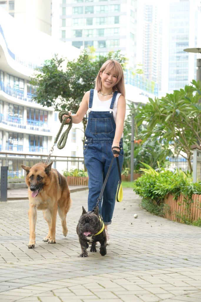 五歲的狼狗Ken接受過訓練,性格溫馴;一歲的老虎狗小虎則比較活潑。