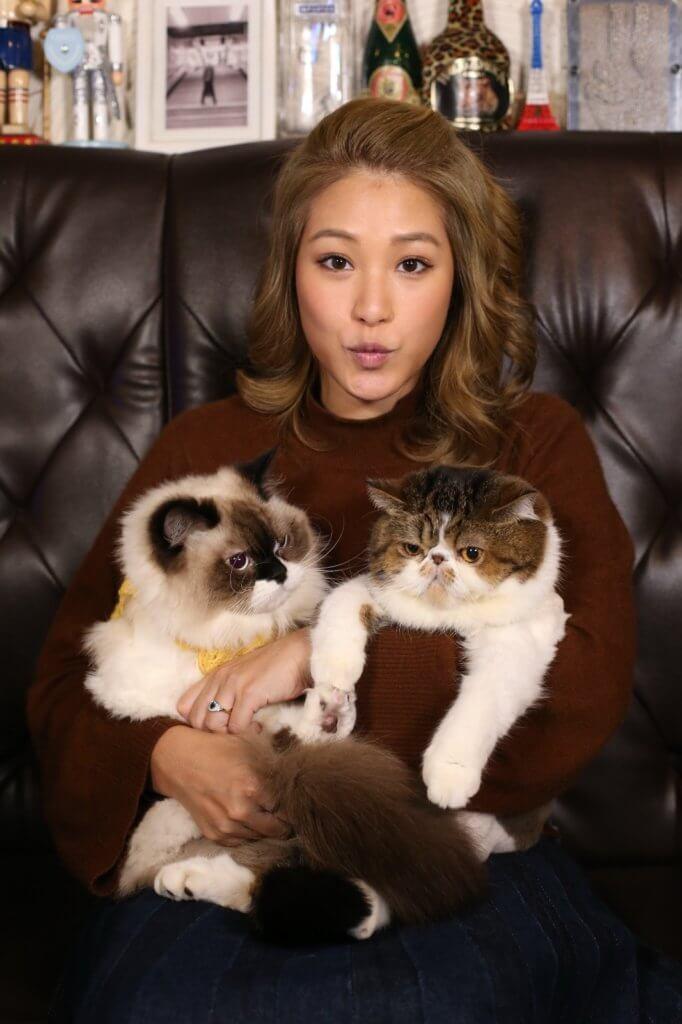 【寵物專訪】吳嘉熙愛貓心瓣肥大