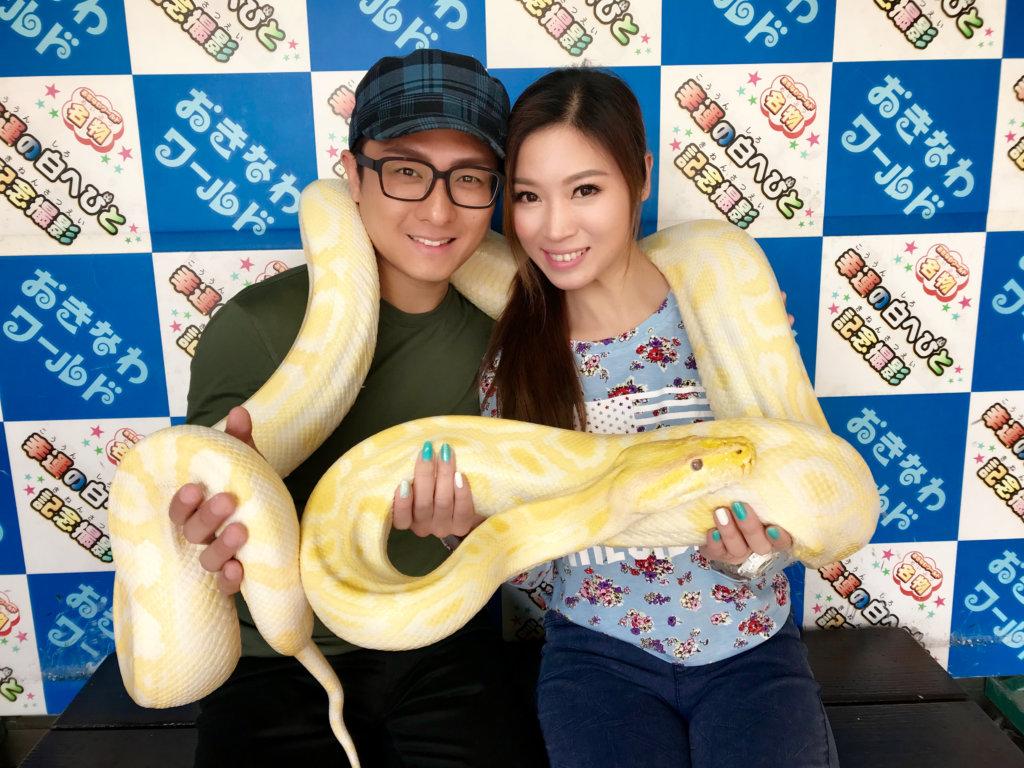 鄭伊娜與潘敬祖一年前在沖繩的求婚之旅,看到這條當地名物幸運之白蛇,興奮拍照留念。