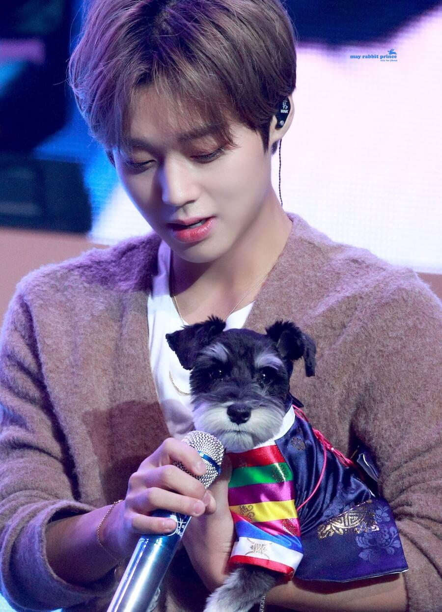 朴志訓接受訪問時稱非常希望帶愛犬Max一起來港,又說不介意Max的人氣超越自己。