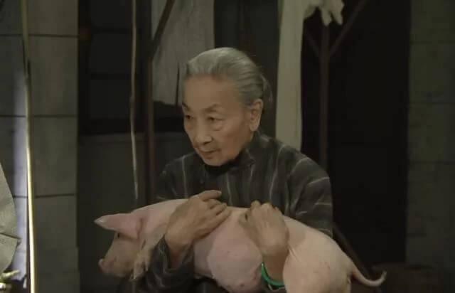 楊依依在劇集《福爾摩師奶》飾演的蓮婆,經常抱着一頭豬,令人印象深刻。