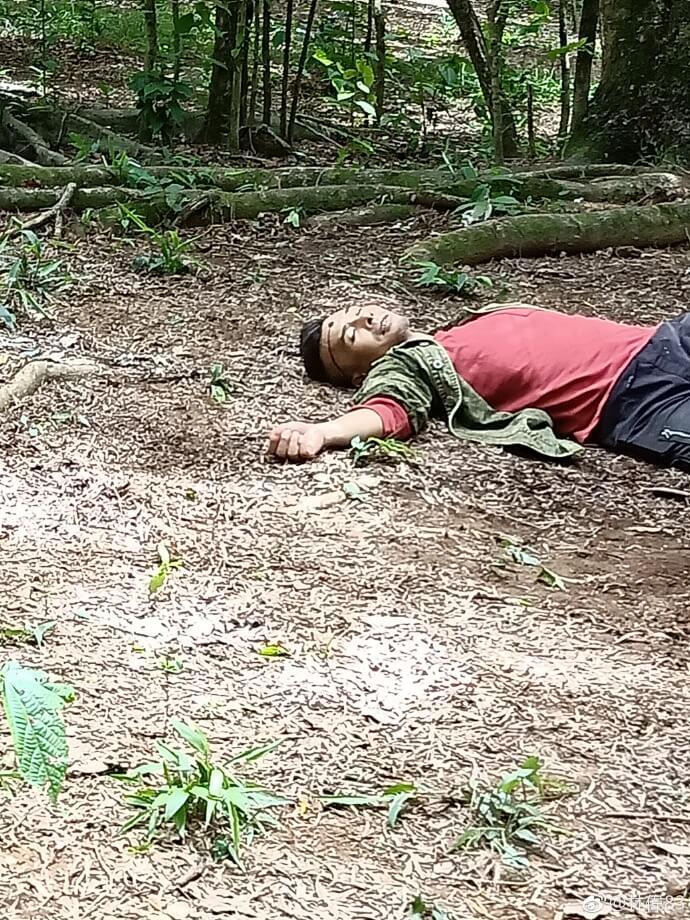 在《鐵探》中飾演悍匪山狗,與幫中兄弟犯過不少大案,最後也命喪槍下。