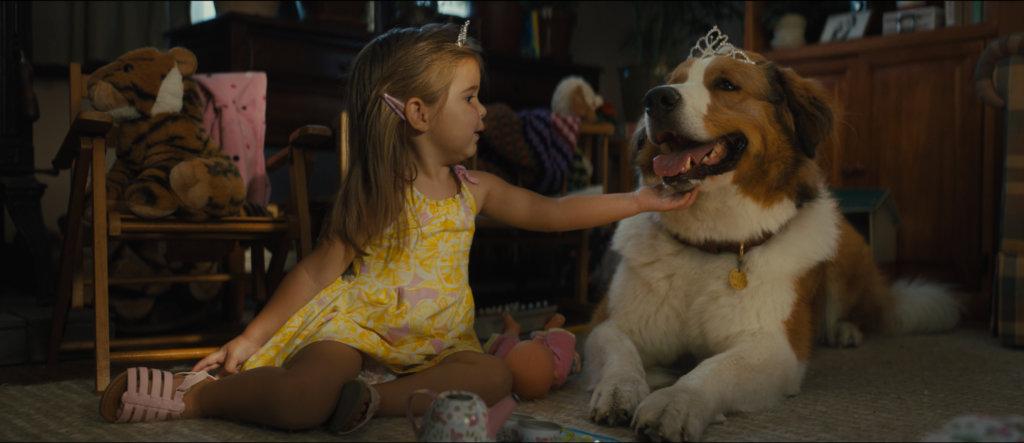 女主角思希小時候已在祖父伊雲的農場生活,經常跟貝利玩。