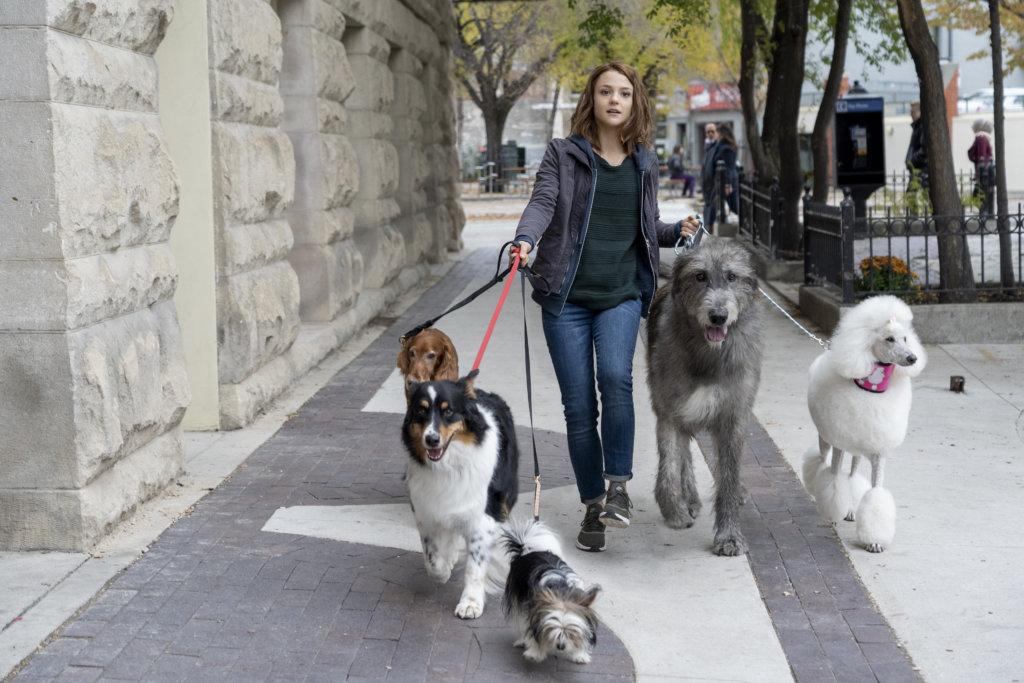 思希長大後到紐約尋夢,但並不如意,唯有靠幫人放狗幫補生活。