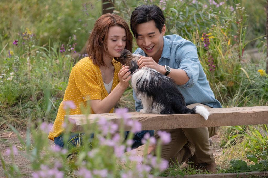 長大後的思希與劉憲華飾演的男友探望祖父母,發現麥斯是貝利其中一個轉世。