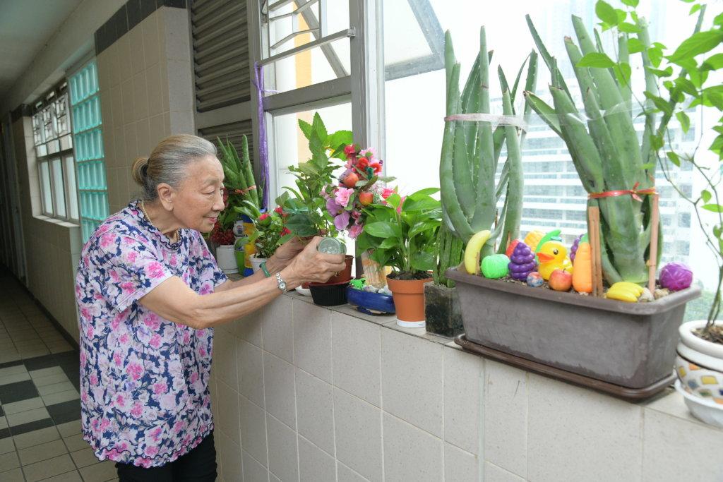 做人最緊要健康開心,依依在住所走廊種滿植物,令人心曠神怡。