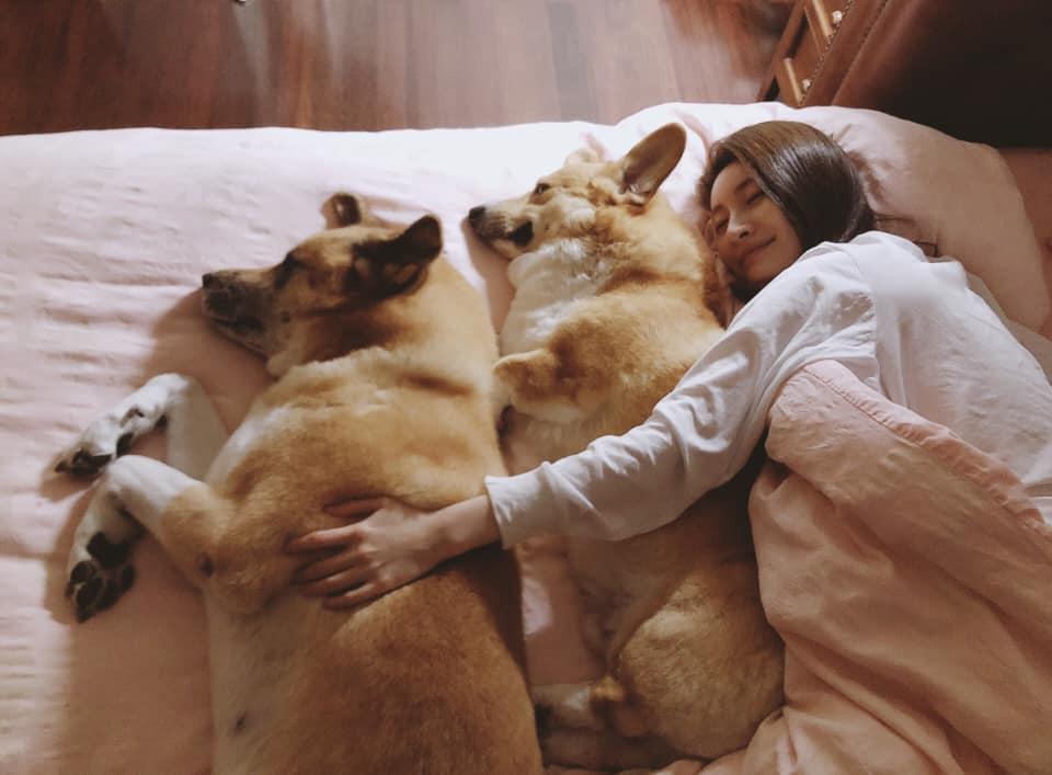 休息一年,連家中三隻愛犬都終於開始感受到她的存在。