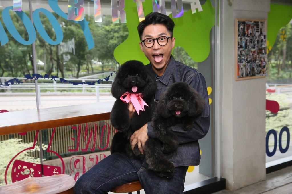 森美養了兩隻貴婦狗,一歲多的家姊Gengar(左)和弟弟Oreo(右)。