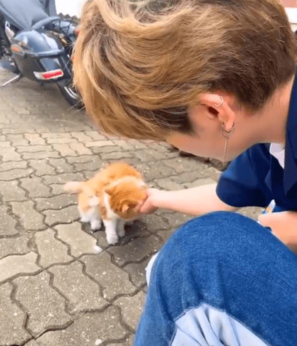 車勛是個愛貓之人,見到路邊的貓都會忍不住摸摸,還會隨身帶着貓零食。