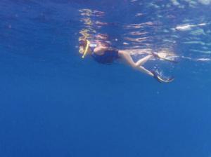 嘉玲姐泳姿優雅