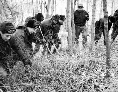 「青蛙少年事件」轟動一時,全民要求徹查,警方在壓力底下在全國展開搜查。