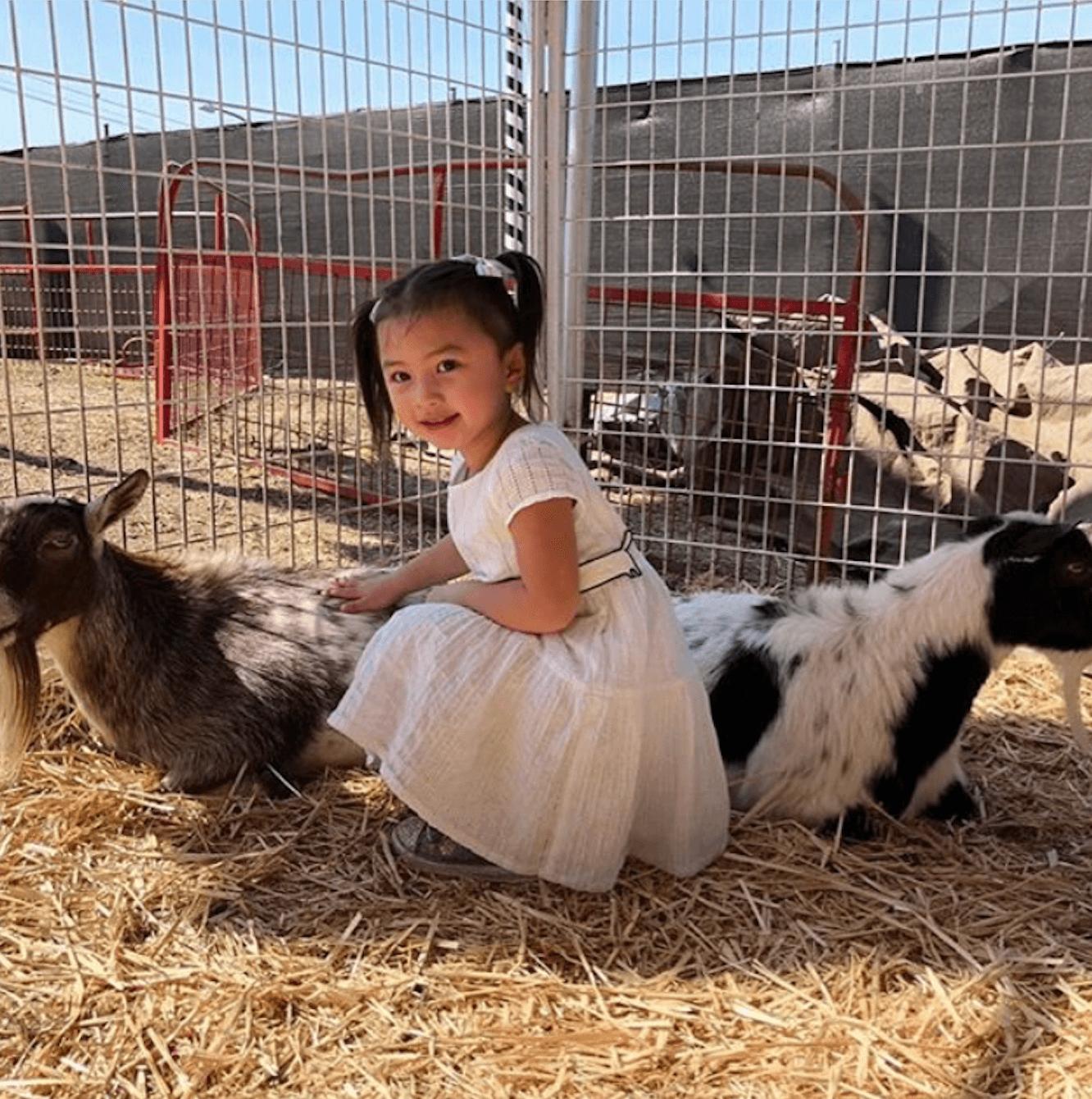 Tessa與小動物互動
